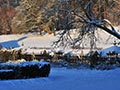 snow-arbour-of-Chateau-de-Vallery