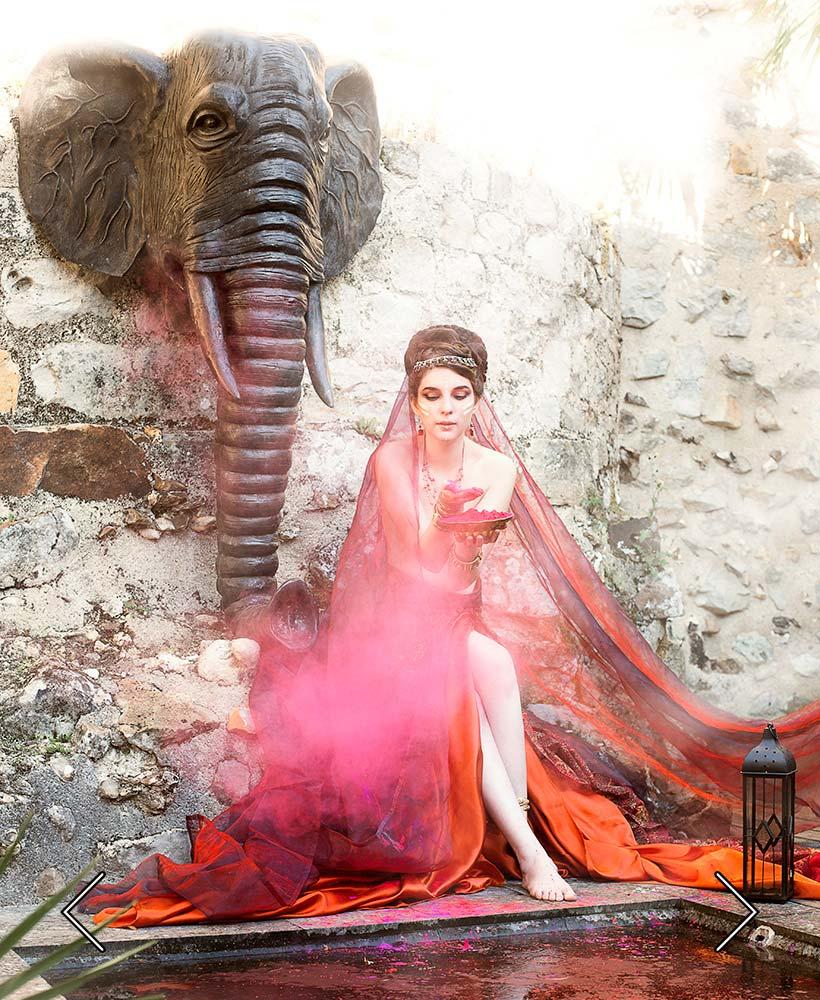 der Elefant des Palmenhains