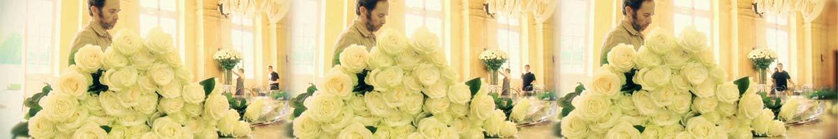 floral set up