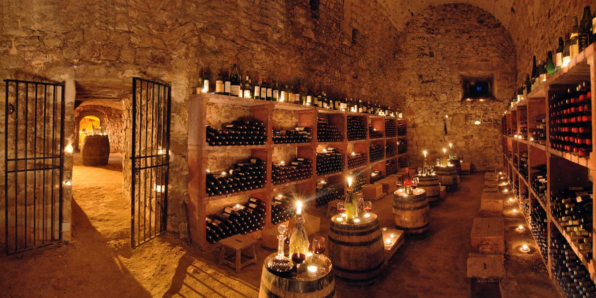 chateau's cellars for wine tasting, one hour from Paris